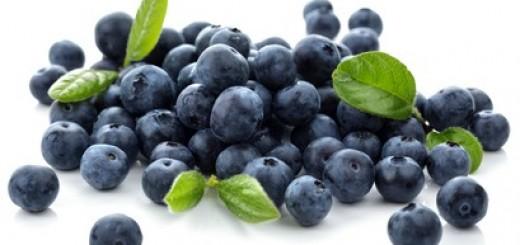 Blueberry antioxidant superfood isolated on white