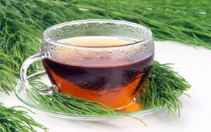 herbatka ze skrzypu polnego dla palacza