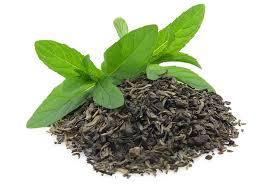 zielona herbata lwlasciwosci zdrowotne