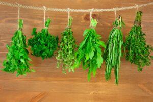 apteczka w twojej kuchni - przyprawy ziolowe