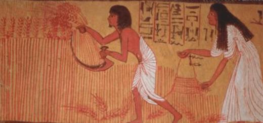 Egipski test ciążowy