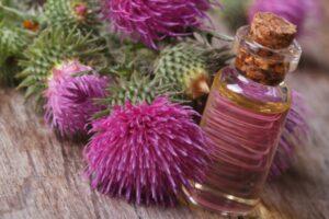 olejek z łopianu na porost włosów