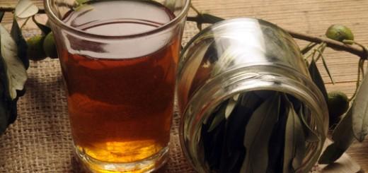 herbatka z liścia oliwnego