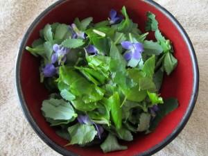 salatka z lisci lipy