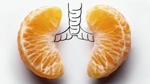 pomarancze pluca