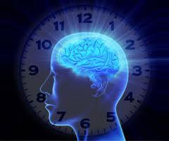 metabolizm-zegar-biologiczny