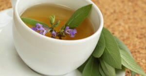 Szałwia lekarska - przepisy lecznicze, olejek szałwiowy, ocet szałwiowy