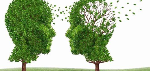 Jak poprawić pamięć i koncentrację