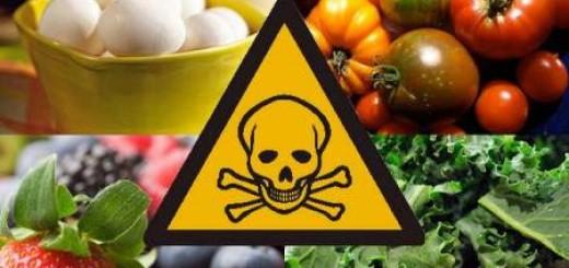 żywność zawierająca toksyny