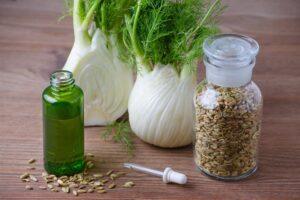 Koper włoski czyli fenkuł - przepisy lecznicze i kulinarne