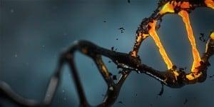 Joga medytacja wpływ na DNA