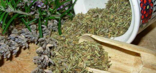 Zioła prowansalskie - domowy przepis najbliższy oryginałowi
