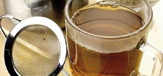 Kobylak czyli szczaw kędzierzawy - najlepszy antybiotyk z łąki