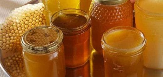 Miód, jego rodzaje, cechy i zastosowania. Jak rozpoznać dobry miód