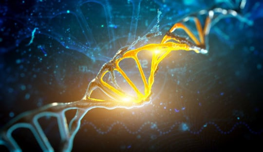 Geny są kontrolowane przez nano piłki futbolowe niespodziewane odkrycie