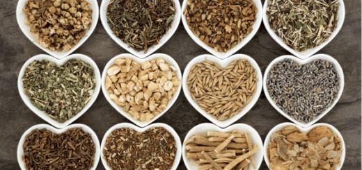 Adaptogeny - rośliny, które wzmocnią i podniosą odporność na stres