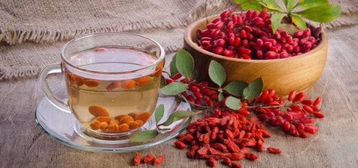 Berberys zakażenia pierwotniakowe, borelioza, chlamydia