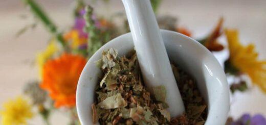Zioła, naturalne recepty dla chorych na reumatyzm