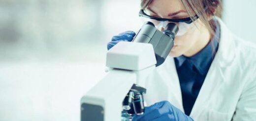 Odkryto nowy organ, jest największy w ludzkim ciele