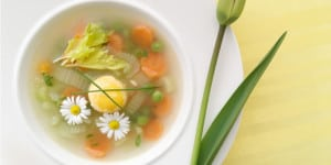 stokrotki zupa wiosenna
