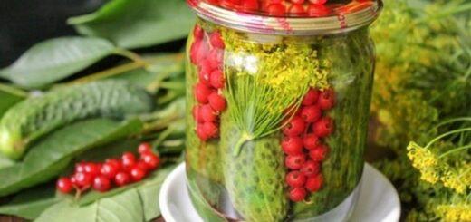 Ogórki małosolne pełne witamin o wyjątkowym smaku