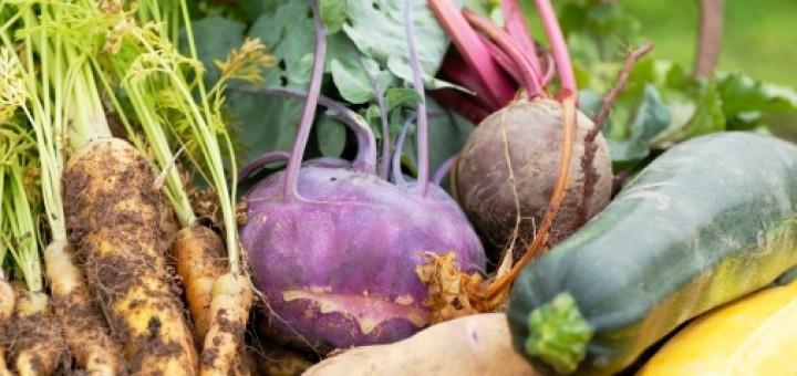 Fenomen naturalnej żywności