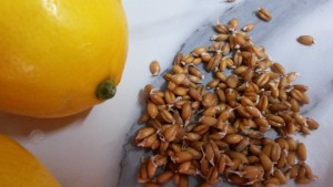 kielki pszenicy