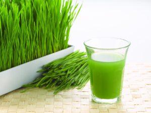 sok z trawą owsianą prawdziwy eliksir zdrowia