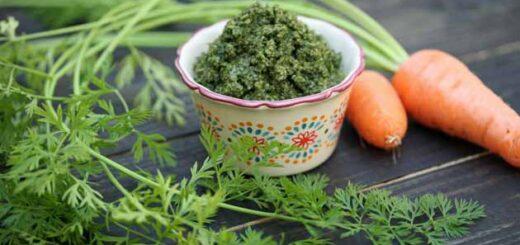 liście marchewki pesto