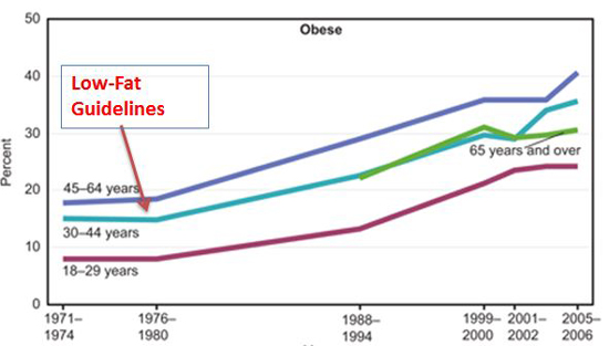 dieta niskotluszczowa a choroby i otylosc