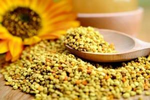 pylek-pszczeli-inaczej-pylek-kwiatowy
