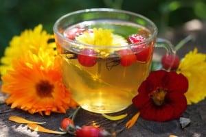 dzika róża herbatka