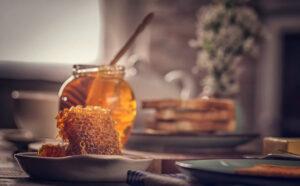preparat domowy jeżówka echinacea