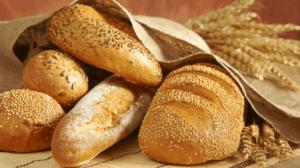 Współczesna pszenica zawiera tysiące szkodliwych dla zdrowia białek