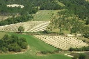 rolnictwo bioróżnorodność