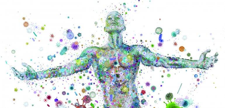 bakterie i ich rola