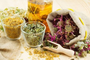 reumatyzm zioła