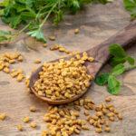 Kozieradka skuteczne zioło na wiele chorób - garść przepisów