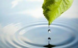 woda lekarstwem