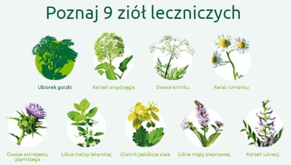 ziola-lecznicze