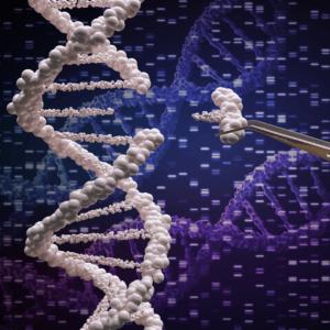 CRISPR. Obiecująca metoda w potrzasku.