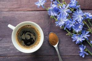 kawa z cykorii podróżnik