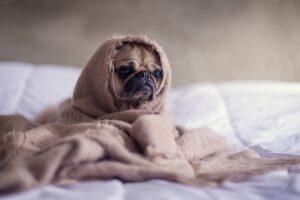 ikea 10 czynnikow-ktore-wplywaja-na-jakosc-snu