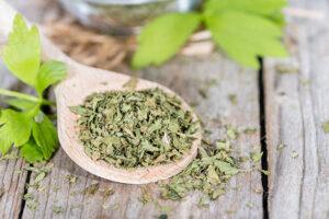 Lubczyk ogrodowy. Przepisy lecznicze z apteczki babuni
