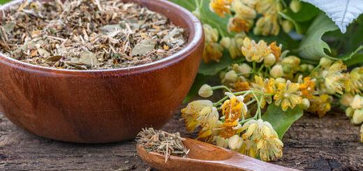 Herbatki ziołowe na przeziębienie i odporność - domowe kompozycje