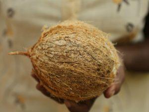 olej kokosowy jak kupować dobry