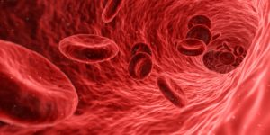 zakrzepica trombocyty zakrzepy