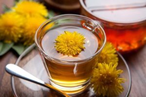 herbatka z mniszka