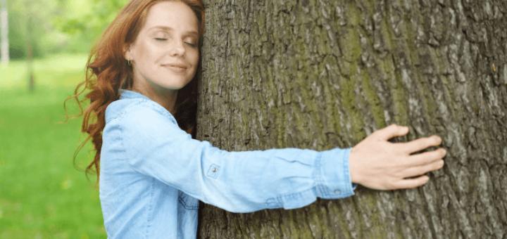 moc drzew lecznicza