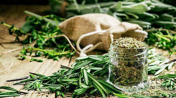 Domowa apteczka ziołowa - jakie zioła warto mieć pod ręką